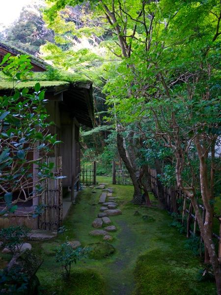 Japan 0021