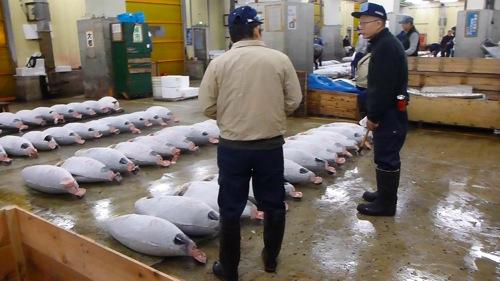Japan 0129